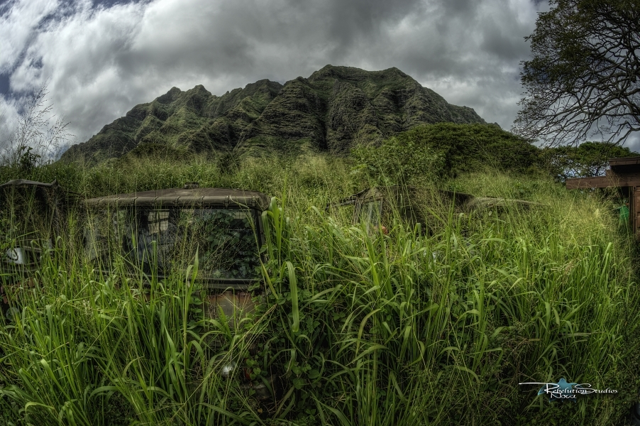 The-Base-of-Kualoa-Valley.jpg